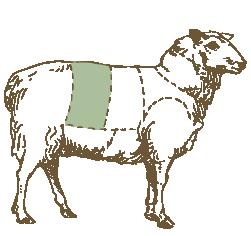 Butcher Lamb Diagram- Loin