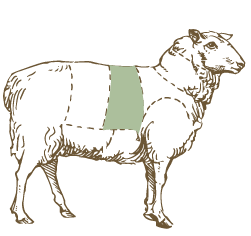 Butcher Lamb Diagram- Rack