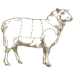 Butcher Lamb Diagram- Shanks